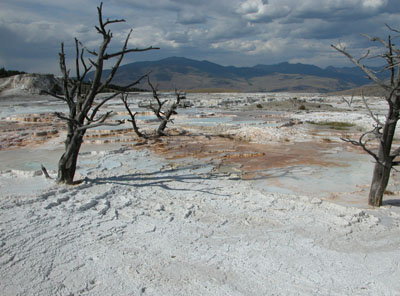 Mammoth Hot Springs - Yellowstone National Park, Wyoming